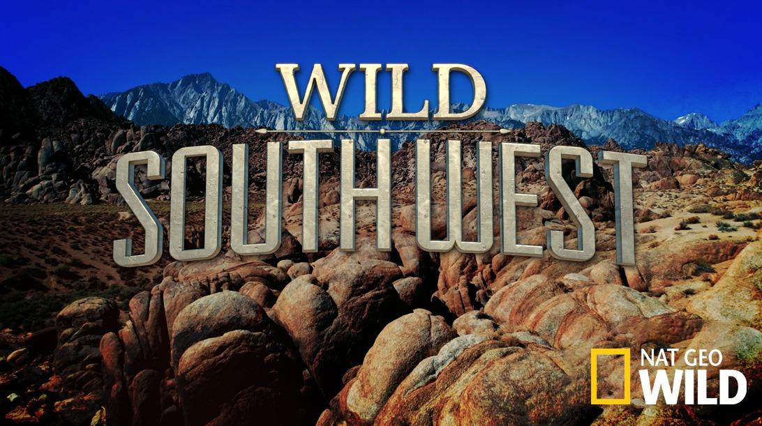 Wild Southwest